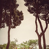 Smeele-Barcelona-Teasers-009