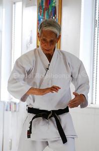 Nishiyama Sensei Seminar, November 2007