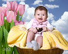 Baby Easter 8x10