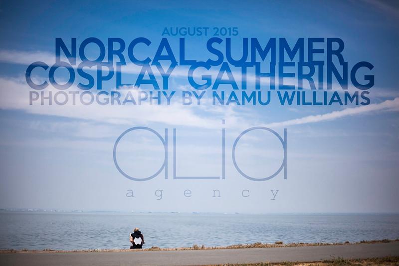 Norcal Summer Cosplay Gathering 2015 - Alia Agency