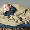 Studio Portraits Infants