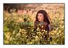Carla dans les hautes herbes tôt le matin en avril 2011...