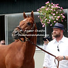 2012  I'll Have Another With Trainer Doug O'Neil