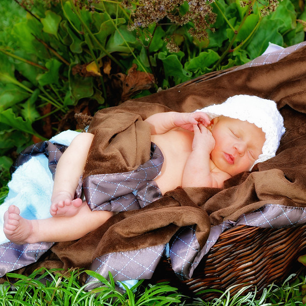 Outdoor newborn portrait with garden setting.
