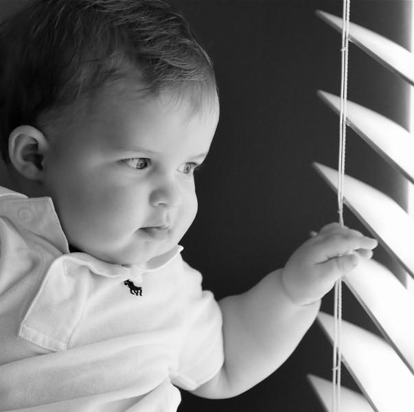 6 month old portrait.
