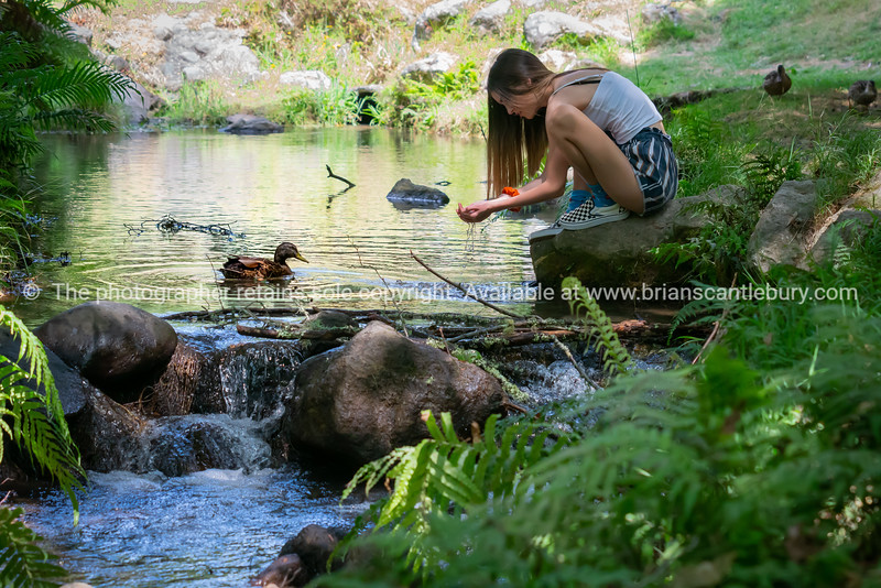 Young woman kneeling by stream catching water in hands      Model Released; Yes