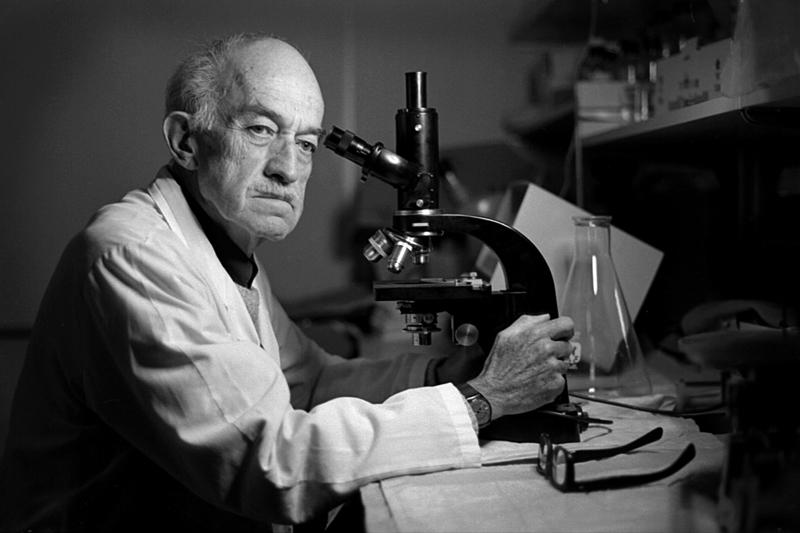 Dr. Julio Martin, research scientist