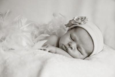 Newborn Portraits - Pietrowski E