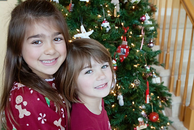 Family Christmas Portraits-Howard P 3