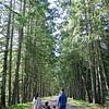 Prevost trail -001