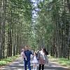 Prevost trail -004