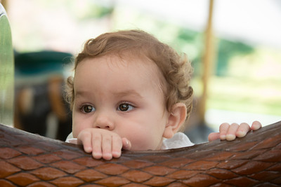Baby, Reid, lincoln Park Zoo, portrait-101