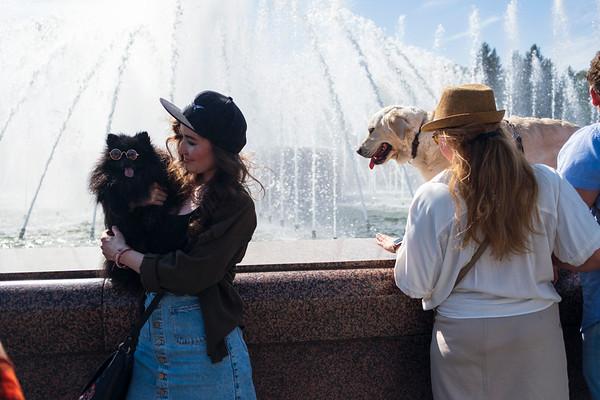 Petshop Days 2021, Saint Petersburg.