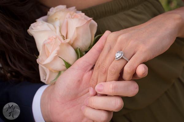 Surprise Proposals Highlights