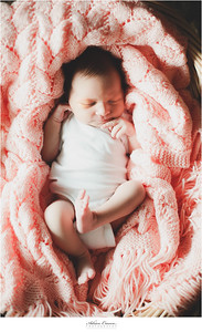 Adrien Craven Photography-Ruby-Newborn017
