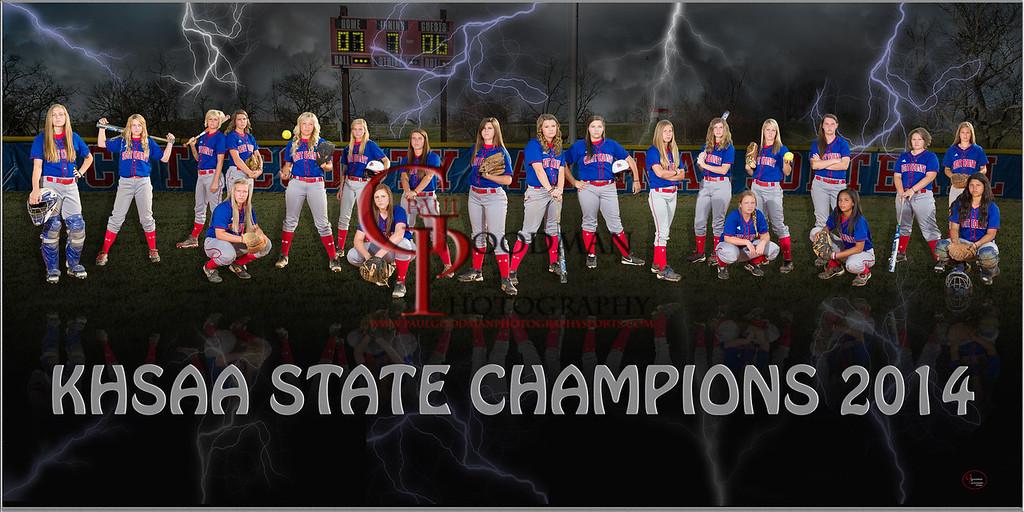 SCHS softball 2014 Poster