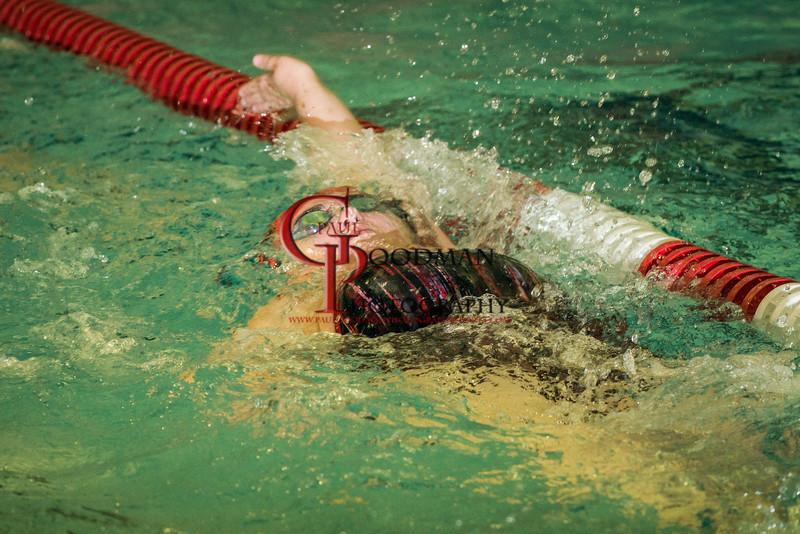 Swim Team 2015