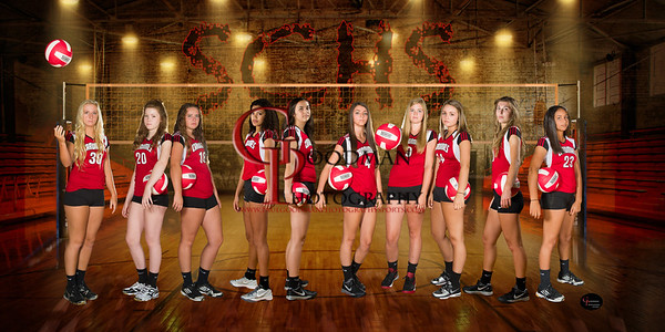 Volleyball_banner2015-3 copy