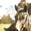 2011-11-4-Senior Portraits12336
