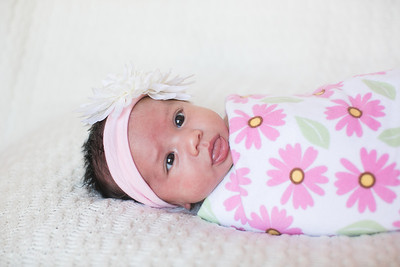 IMG_Newborn_Portrait_Samantha-0683