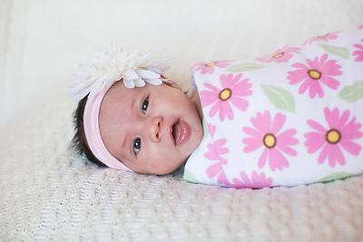IMG_Newborn_Portrait_Samantha-0699