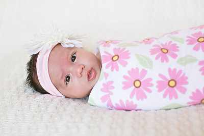 IMG_Newborn_Portrait_Samantha-0703