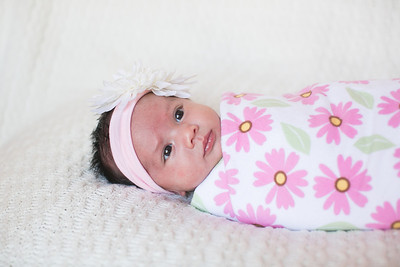 IMG_Newborn_Portrait_Samantha-0692
