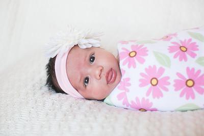 IMG_Newborn_Portrait_Samantha-0684