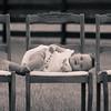 DawnMcKinstryPhotography_SaulsWilsonFamily-4
