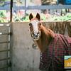 Sea Horse Ranch Family Photos_004