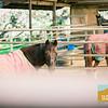 Sea Horse Ranch Family Photos_009