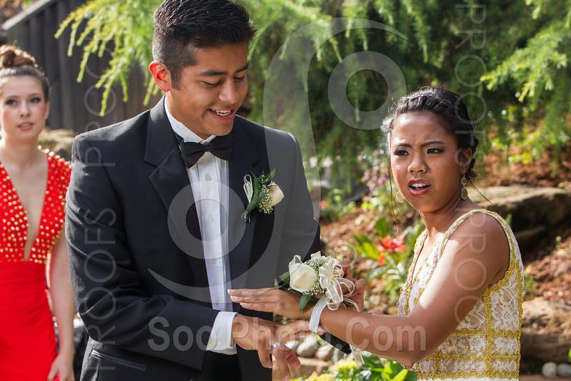 2014-05-17-yadegar-senior-prom-family-5249