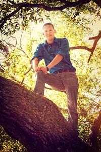 treeshot2