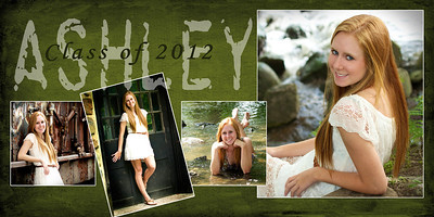 10 x 20 Story Board  This story board is a matte finished print matted to a thick surface giving it a finished look and durability.  It can be displayed on an easel or framed.  Either way it's a unique piece!   It's a great way to show off your senior photos at your graduation party!