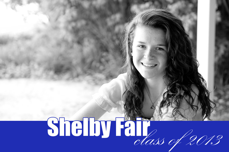 Shelby_cover
