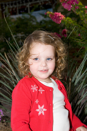 Sieffert Christmas Portraits