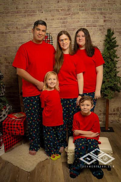 Holiday Minis 2020-07437
