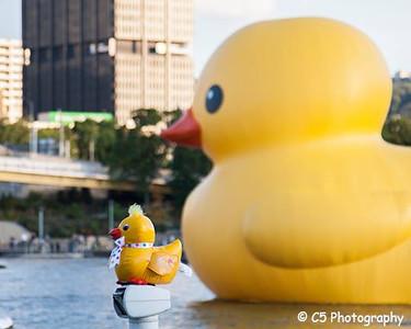 Rubber Duck 07