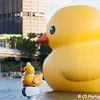Rubber Duck 07