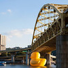 Rubber Duck 05