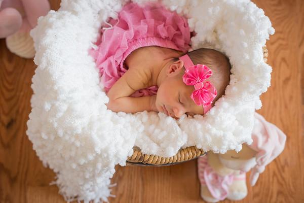 Sophia {Newborn}