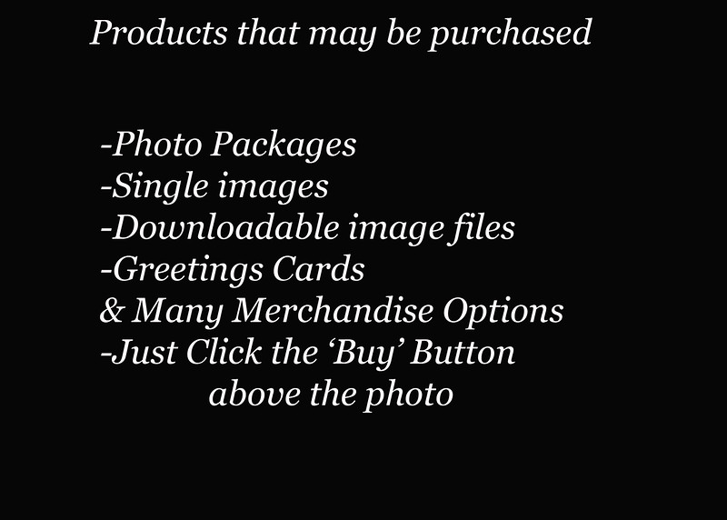 Products that may be purchased copy