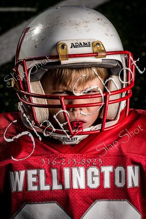 Wellington-6434