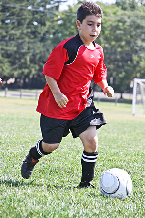 1138 Upper Dublin Soccer Club