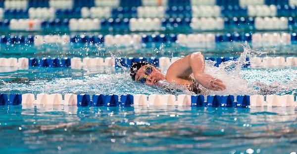 2017 OUA Swimming Championships