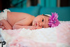 Utah Newborn Photographer-54