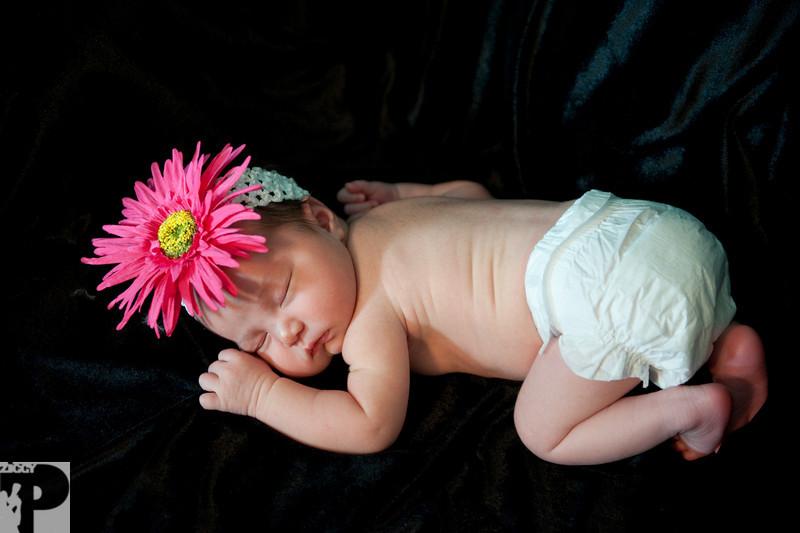 Utah Newborn Photographer-5