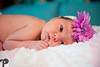 Utah Newborn Photographer-55