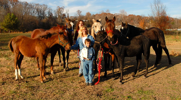Dill Family Portrait Christmas 2006 Mom, the two kids, and all 7 horses.