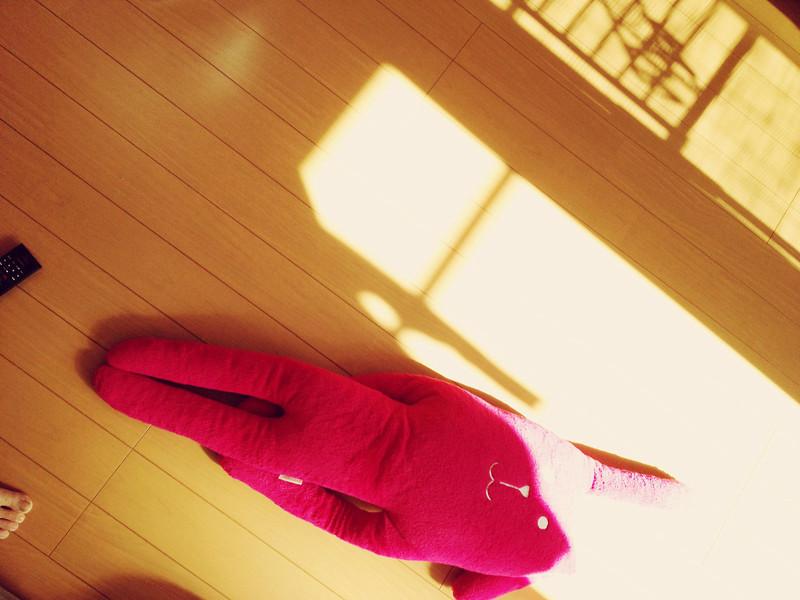 File No.67<br /> <br /> そして福井で。<br /> <br /> 燃え尽きました。<br /> <br /> 立ったり座ったり、和室での一日で、翌日はすっかり筋肉痛。おしりのほっぺがね。<br /> <br /> 初冬の福井、三国での楽しく、実り多き滞在でした。今度は夏がいいな。だらーっと日本海の夏休み。